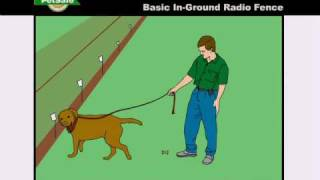 Training Your Dog: Petsafe In-ground Radio Fence - Www.petsafe.net