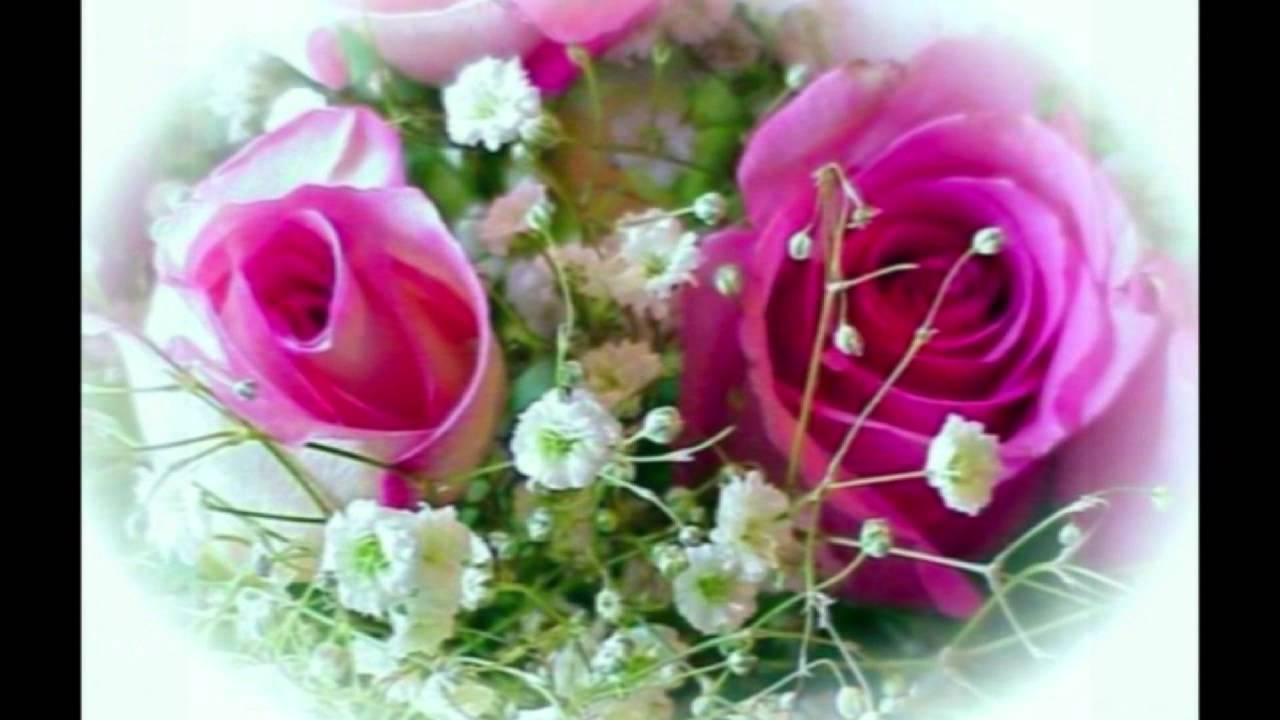 ирина круг скачать цветы без повода
