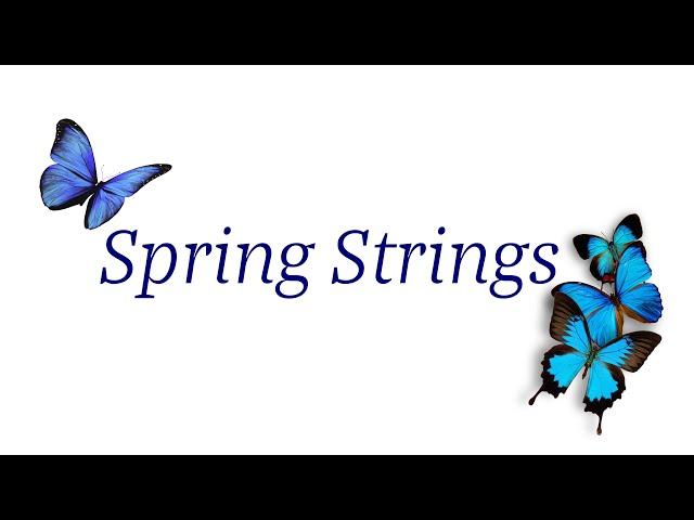 Brevard Philharmonic VIRTUAL SPRING STRINGS