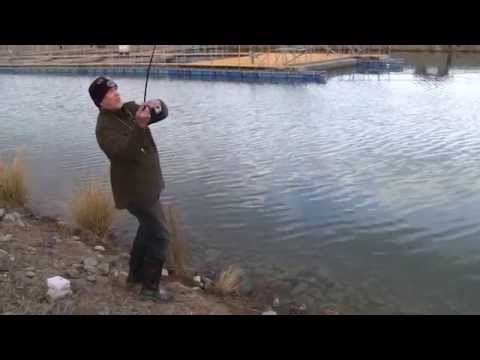 Complete Angler Fishing Adventures Featuring Huge Fish