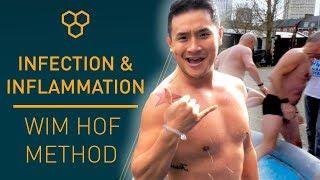 Nflammation Wim Hof Method