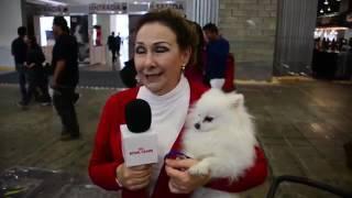 Así se vivió la Expo Can 2015 de Royal Canin