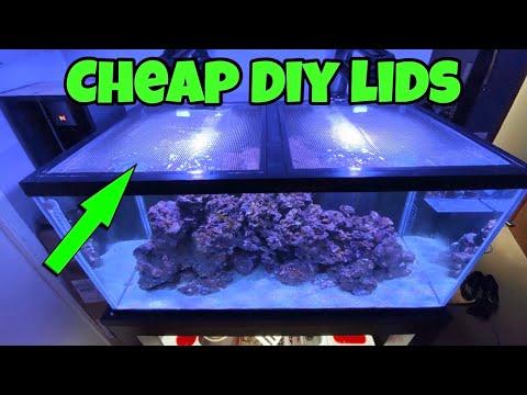 CHEAP DIY Aquarium LID To SAVE My JUMPING Saltwater Fish