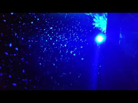 Eurolite Led Snowfall Effektr 246 Hre Wei 223 Doovi