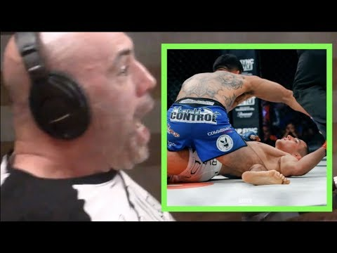 Joe Rogan Reacts to Henry Corrales KO'ing Aaron Pico