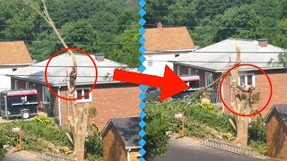 Instant Karma Fails Compilation ¦ Best Fails ever ¦CrownZ