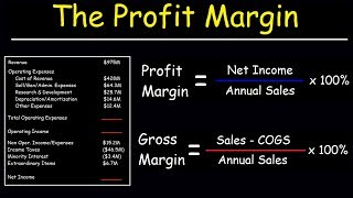 Profit Margin, Gross Margin, and Operating Margin - With Income Statements
