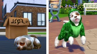 STRAY to SIMSTAGRAM STAR | BIRTH TO DEATH - DOG EDITION | A Sims 4 Story
