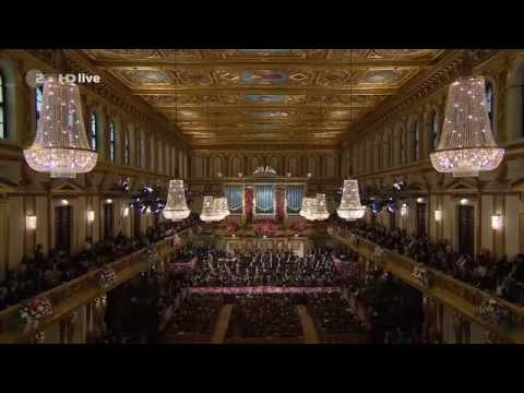 New Year Concert 2014 Vienna Philharmonique Orchestra