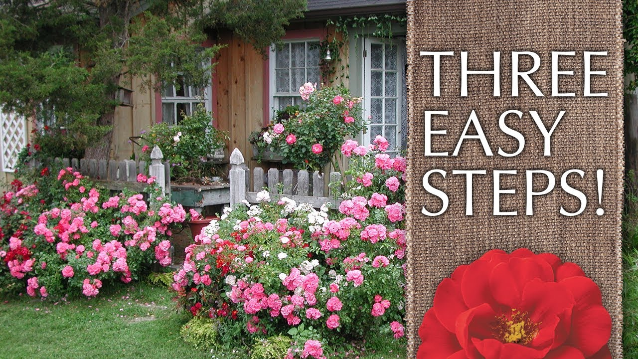 How To Create A Cottage Garden Youtube