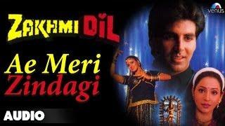 zakhmi dil ae meri zindagi full audio song   akshay kumar ashwini bhave