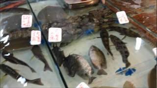 Pescaderia en Hong Kong