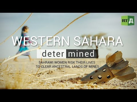 Western Sahara: Determined. Sahrawi women risk their lives to clear ancestral lands of mines