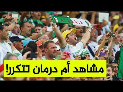 انطلاق التسجيلات لنقل أنصار الخضر إلى مصر تحسبا للقاء النصف النهائي ضد نيجيريا