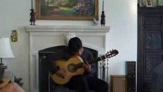 Mir Ali Flamenco Guitar Selection 2