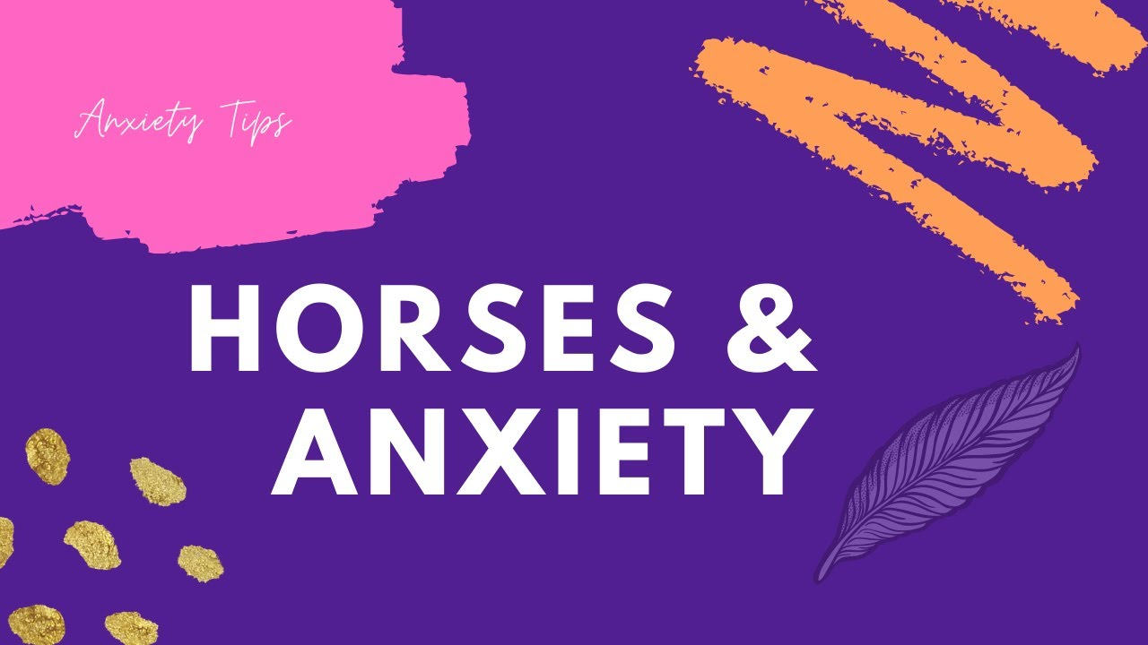 How Horses Can Help Anxiety