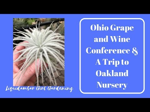Ohio Grape and Wine Conference & Houseplants at Oakland