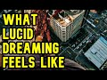 What Lucid Dreaming FEELS Like: What To Expect, Pain, Pleasure Etc