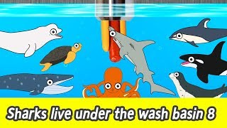 [EN] Sharks live under the wash basin 8, sea animals story, shark and whale namesㅣCoCosToy