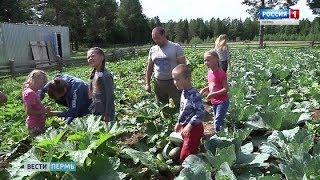 Лучшая многодетная семья живет в Кудымкаре