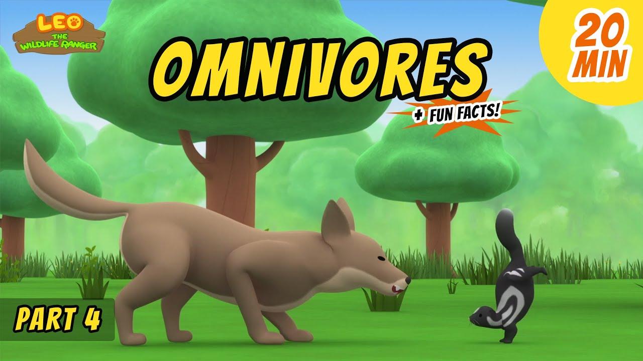 Omnivores (Part 4/4) - Animals Stories for Kids   Educational   Leo the Wildlife Ranger