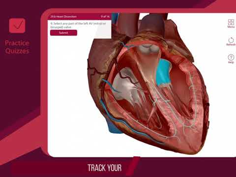 Anatomy & Physiology - Apps on Google Play