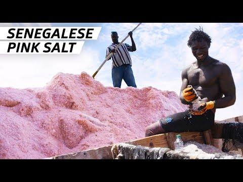 How 60,000 Metric Tons of Salt Are Harvested from One of the World's Saltiest Lakes  — Handmade