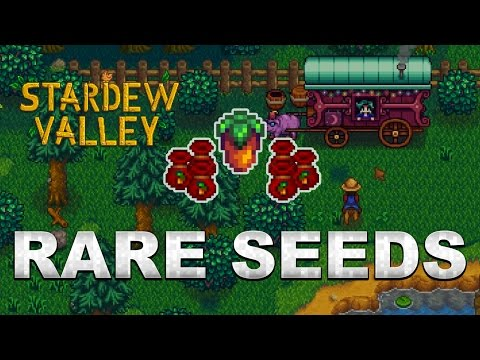Stardew Valley 1.1 Tips: How to get Rare Seeds