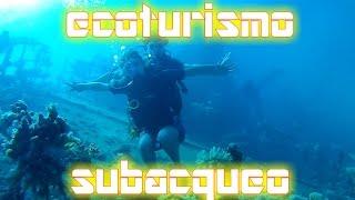 EGITTO Ecoturismo nel MarRosso ❙ immersioni nella barriera corallina  ❙ vlog