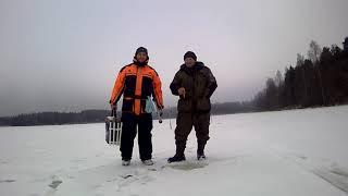 Озеро Велье Валдайский район Ловим окушка Рыбалка с физруком