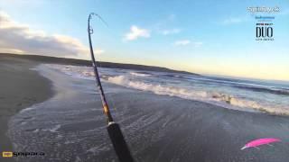 Pesca de Corvina con equipo ligero, Team SpinRock Chile por N. Torrejón