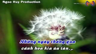 Bồ Công Anh Trong Gió - Nam Du [Karaoke 480p] [Handmade Movie] [Beat Tach]