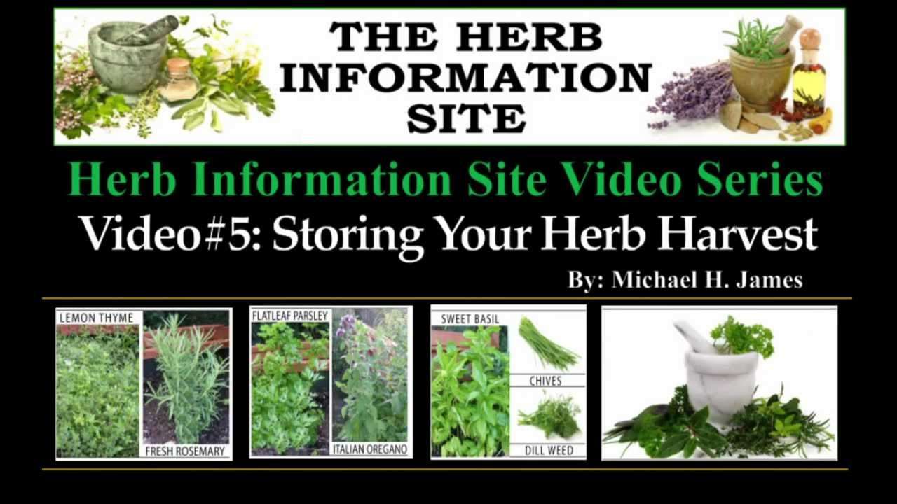 preserving your herb harvest mov youtube