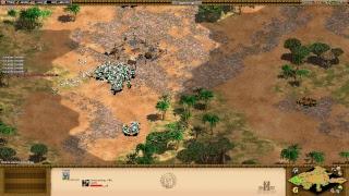AOE II: FURIOUS THE MONKEY BOY FOUND IN GAME