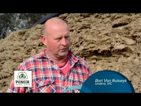 Bart Van Ruiswyk uses Pioneer® brand 11G22 for quicker fermentation