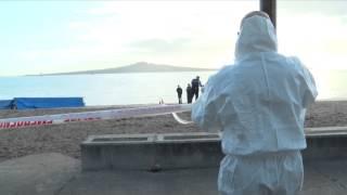 Body Found on Auckland Beach