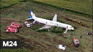 Опубликована расшифровка переговоров пилотов севшего на кукурузном поле лайнера - Москва 24
