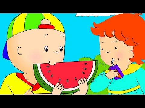 Caillou Türkçe HD - Caillou ve Piknik | kayu cizgi filmi | YENI | Caillou Turkis