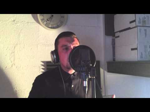 Christian Sayers - Wrecking Ball (Cover)