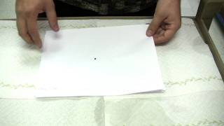 Flea Control : How Fast Do Fleas Multiply?