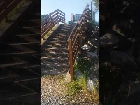 Parque tradução  de São  Nicolau!