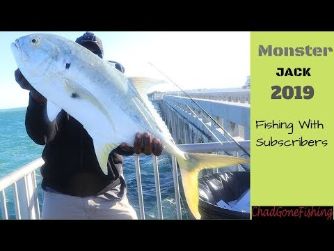 MONSTER Jack Crevalle! Florida Keys Bridge Fishing.