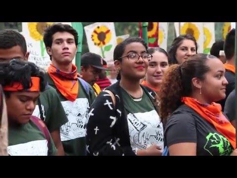 Dear World: the UN ECOSOC Youth Forum