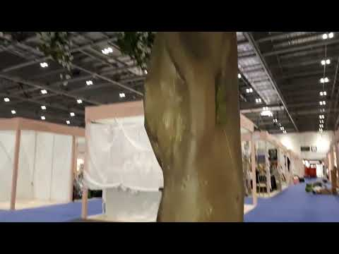 Copy of 4.5 m tall blossom trees by Trees by Design Ltd