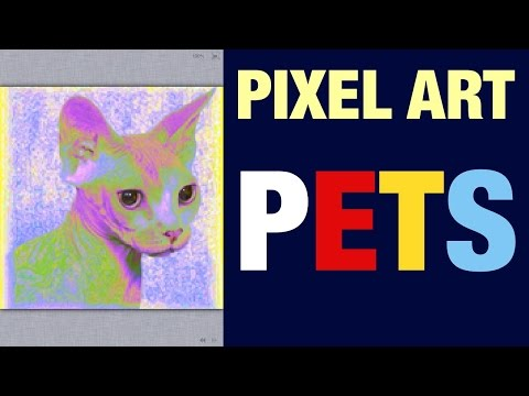 CAT BREED SPHYNX PETS PIXEL ART VIDEO