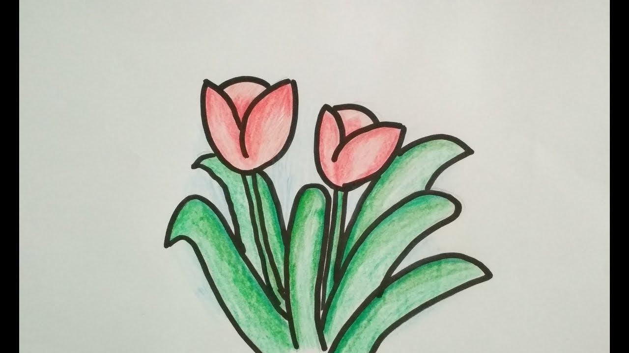 Menggambar  Bunga  Tulip Mudah Untuk Anak TK Paud dan SD