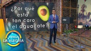 ¡Sergio Sepúlveda nos explica por qué sube tanto de precio el aguacate! | Venga La Alegría