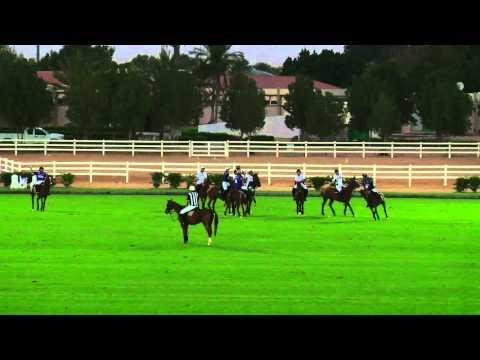 Desert Palm VS UAE Polo in the Emirates Open Polo Championship 2015