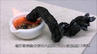 Video Amazing Science-Black Snake Monster 熔岩怪 download MP3, 3GP, MP4, WEBM, AVI, FLV Oktober 2018