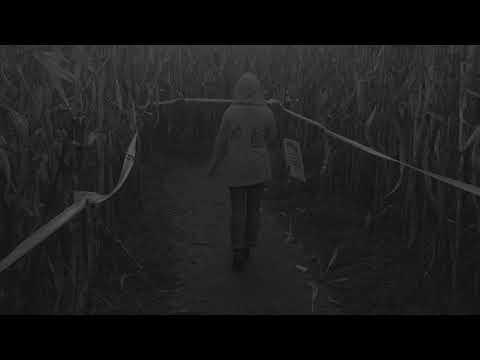 The Dark Rows of Uncle Shucks Farm